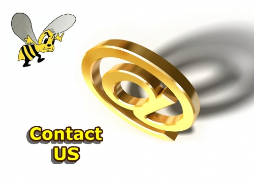 Feel Free to contact us anytime!